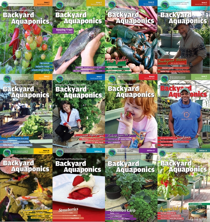 Backyard Magazines Literally everything about your backyard in digital